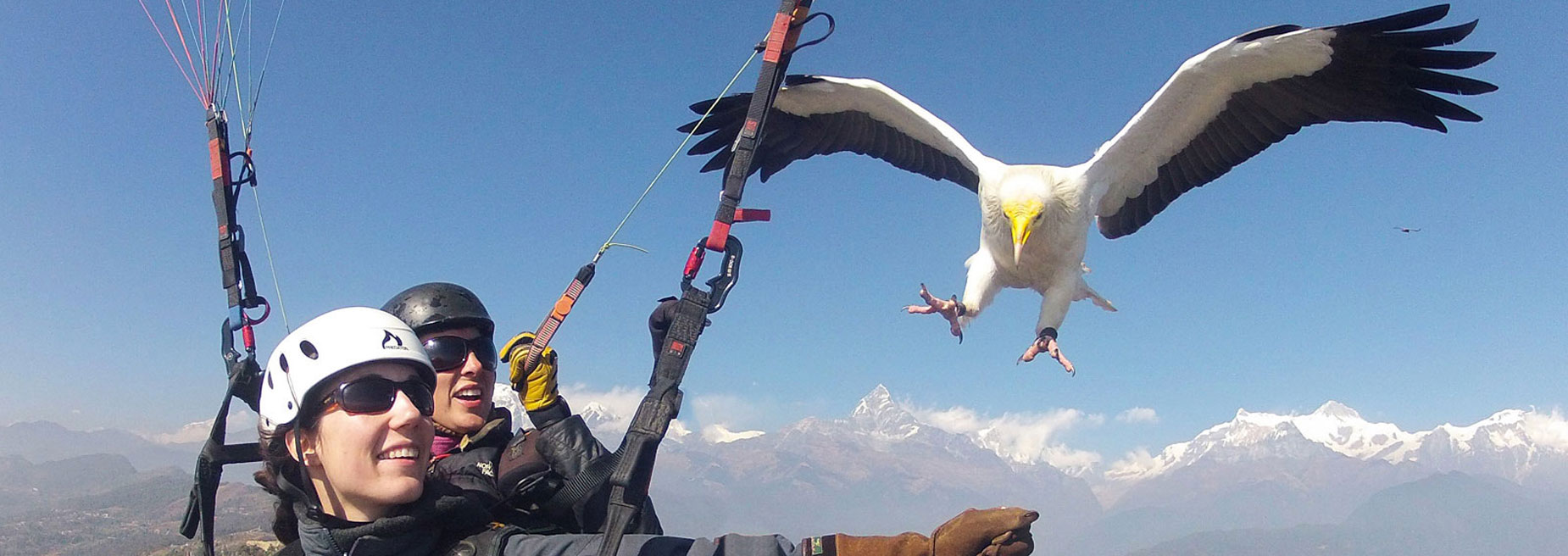 Paragliding - The Ultimate flying Experience in Nepal