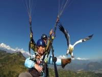 Parahwaking in Annapurna (Pokhara)