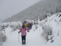 Winter Trail to EBC