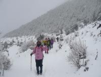 Winter Trail to EBC