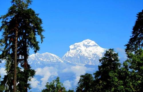 Dhaulagiri Sanctuary Trek